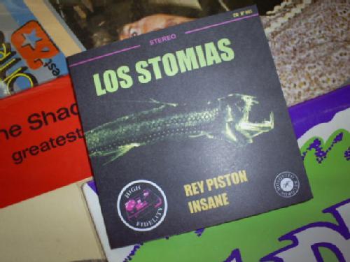 stomias-rey-piston