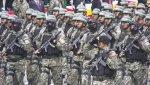 DESFILE Y GRAN PARADA MILITAR DEL PERÚ 2011 (15)
