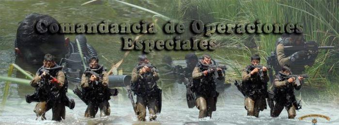 FOES PERU 2013