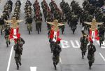 DESFILE MILITAR PERUANO 2014 (30)