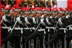 DESFILE Y GRAN PARADA MILITAR DEL PERU 2015 (45)