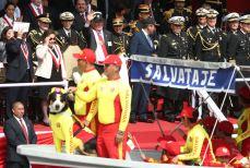 DESFILE Y GRAN PARADA MILITAR PERU 2016 (20)