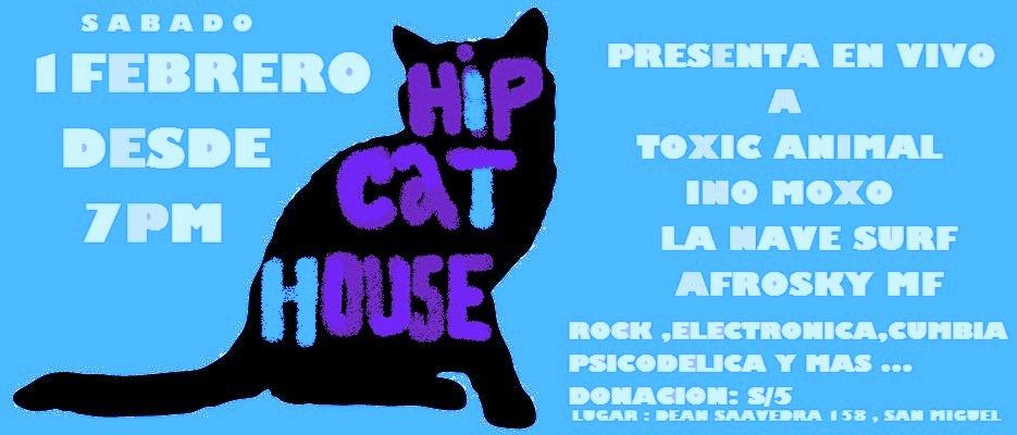 TONO HIP CAT HOUSE